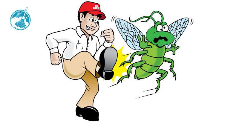 شركة رش مبيدات بعسير 0552398100 افضل شركات مكافحة الحشرات البراغيث المنزلية والقضاء عليها نهائيا.